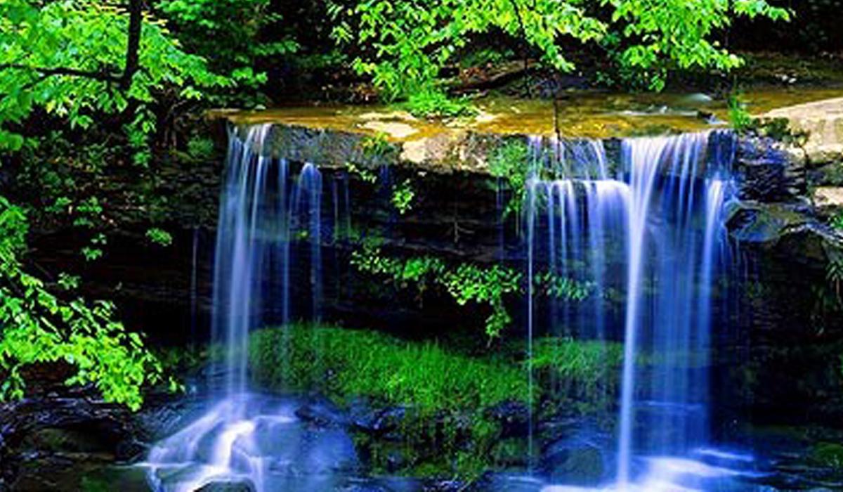 Статус површинских вода